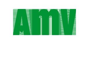 AMV El Seguro Ganador